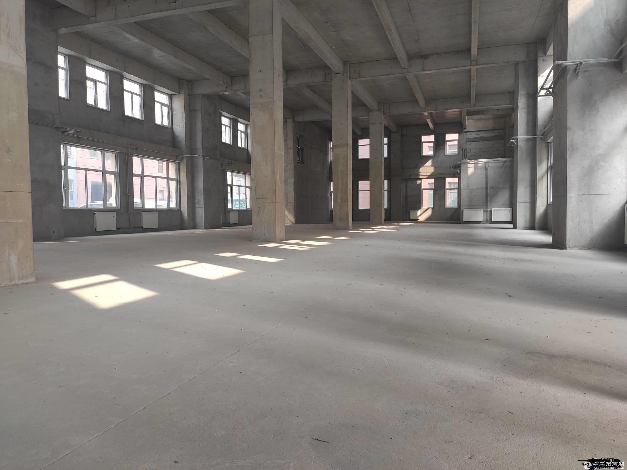3000㎡厂房,国有工业土地,50年大产权,能贷款,多行准入图片5