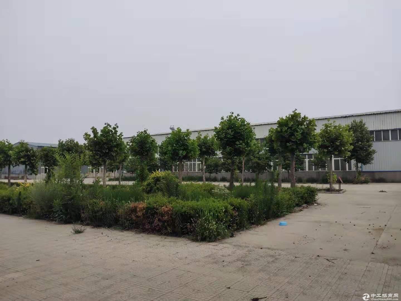 青岛平度市土地厂房转让-图2