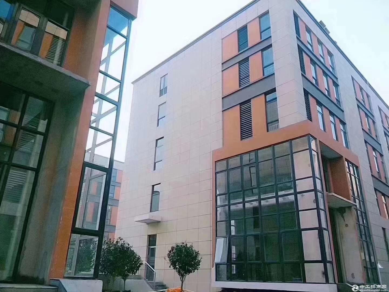 层高8.1米紧邻比亚迪花园式框架结构厂房首付三成可贷10年火热招商-图3