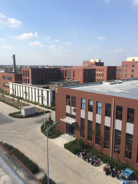 上海第三机场周边小面积厂房,50年产权,首付一成