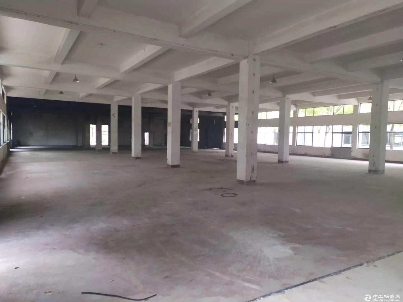 新桥厂房出租 独栋办公研发楼 名企入住