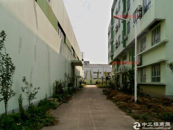 JS3235独院单层14146平空地13亩配行车办宿装修