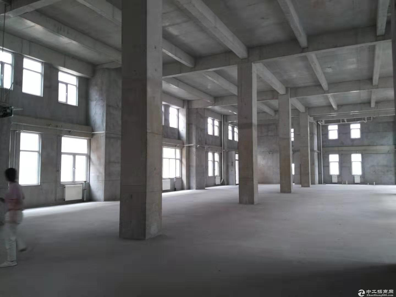【北辰开发区独栋厂房出售】多行业准入,可环评可贷款,开发商直售-图8