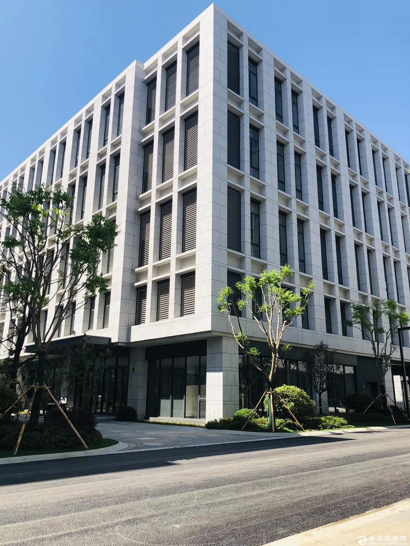 非中介全新厂房1000平一楼 姑苏实验小学对面 好招工-图3