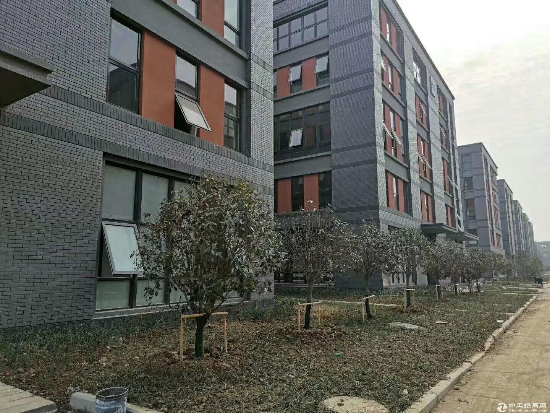 出售8米层高,肥西2层独栋框架厂房,首付2成起