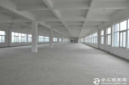 桃花工业园独栋厂房出售自由分割 独立产权图片1