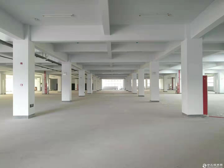 桃花工业园独栋厂房出售自由分割 独立产权图片2