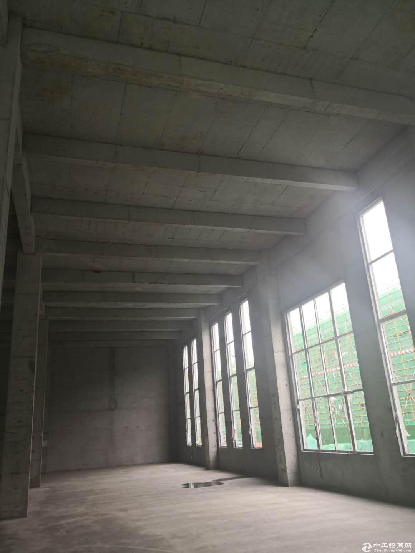 济南产业园600-4000平米厂房出售-图4