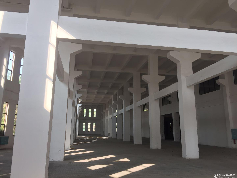 容桂高黎工业区 厂房7000方 可办环保证共1.8万方可分租