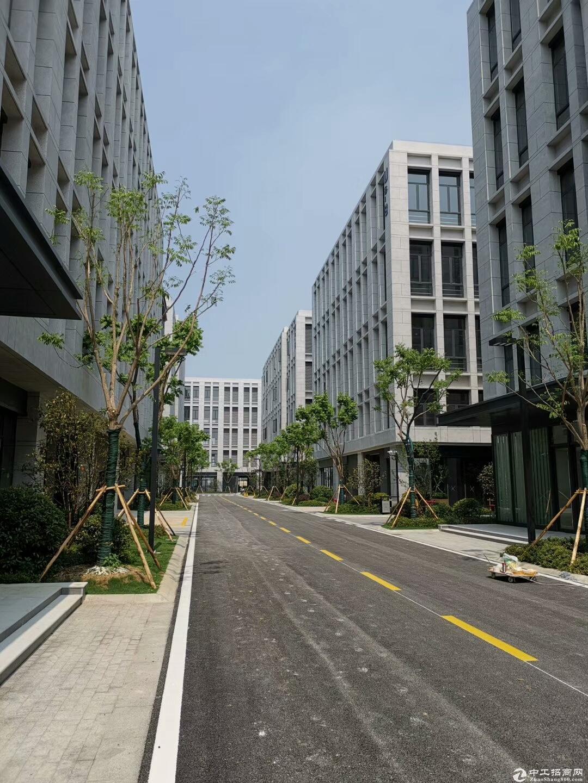 吴中重点项目 工业用地 产业聚集区 高架路旁 高标准 独立产证 首层7.2米 配套食堂宿舍-图2