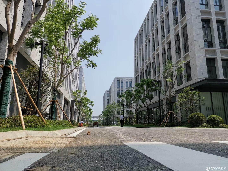 吴中重点项目 工业用地 产业聚集区 高架路旁 高标准 独立产证 首层7.2米 配套食堂宿舍-图4
