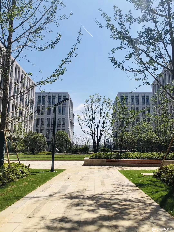 吴中重点项目 工业用地 产业聚集区 高架路旁 高标准 独立产证 首层7.2米 配套食堂宿舍-图8