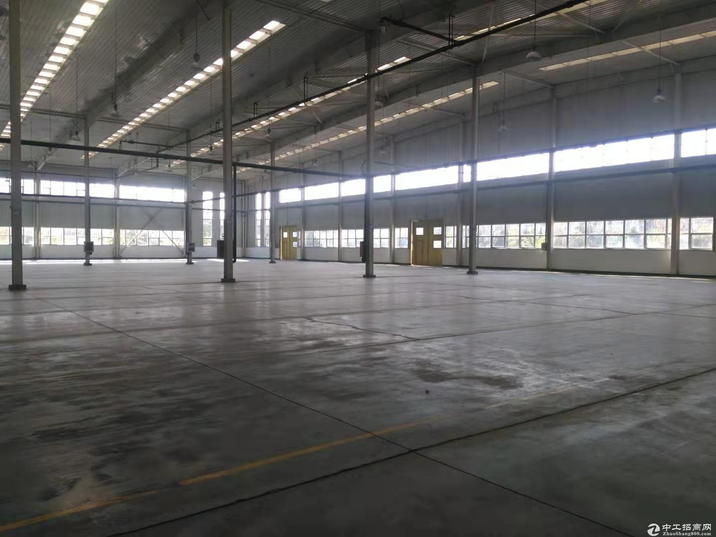 空港经济区10000平米丙二类高台库、厂房出租,可分租-图5