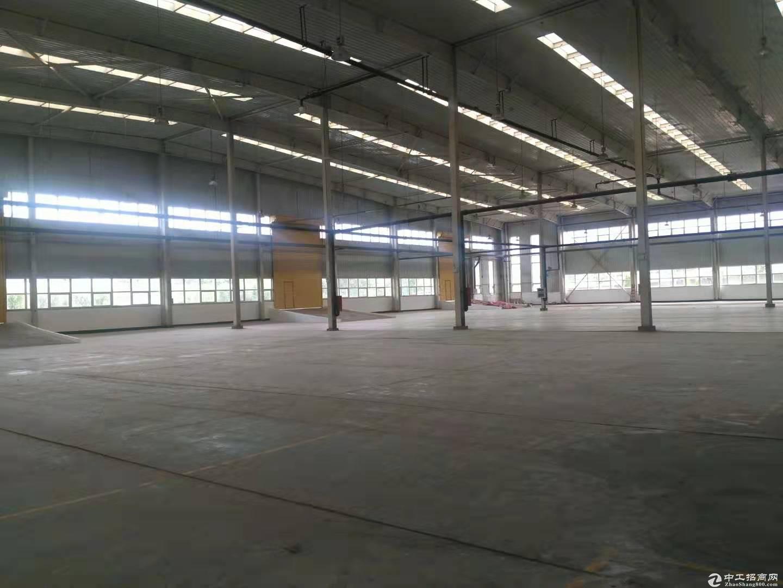 空港经济区10000平米丙二类高台库、厂房出租,可分租-图6