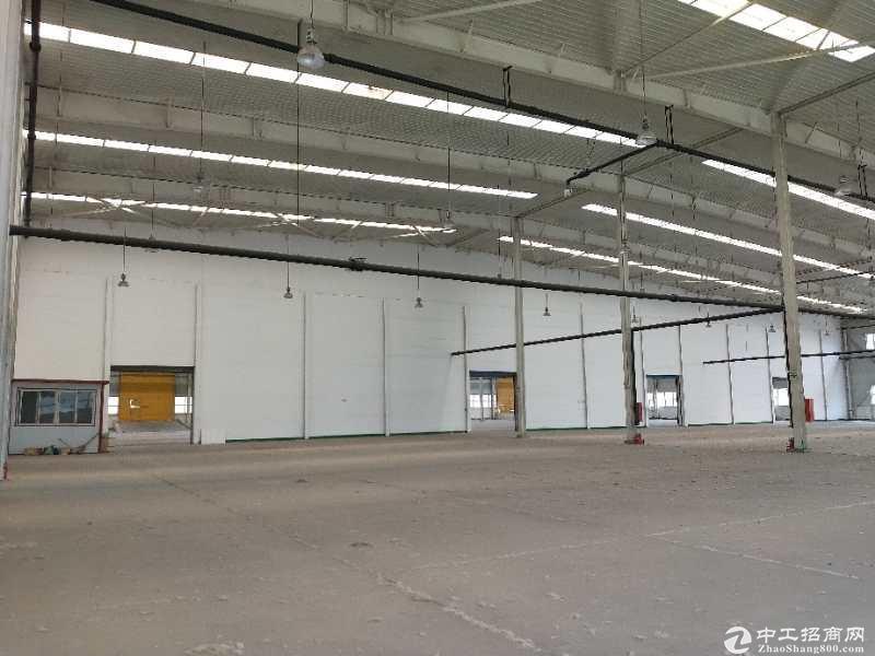 空港经济区10000平米丙二类高台库、厂房出租,可分租-图7