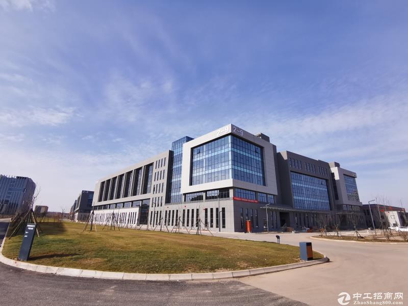 28XX元/平米享高标准现房厂房 蔡家坡厂房产业园钜惠来袭图片4
