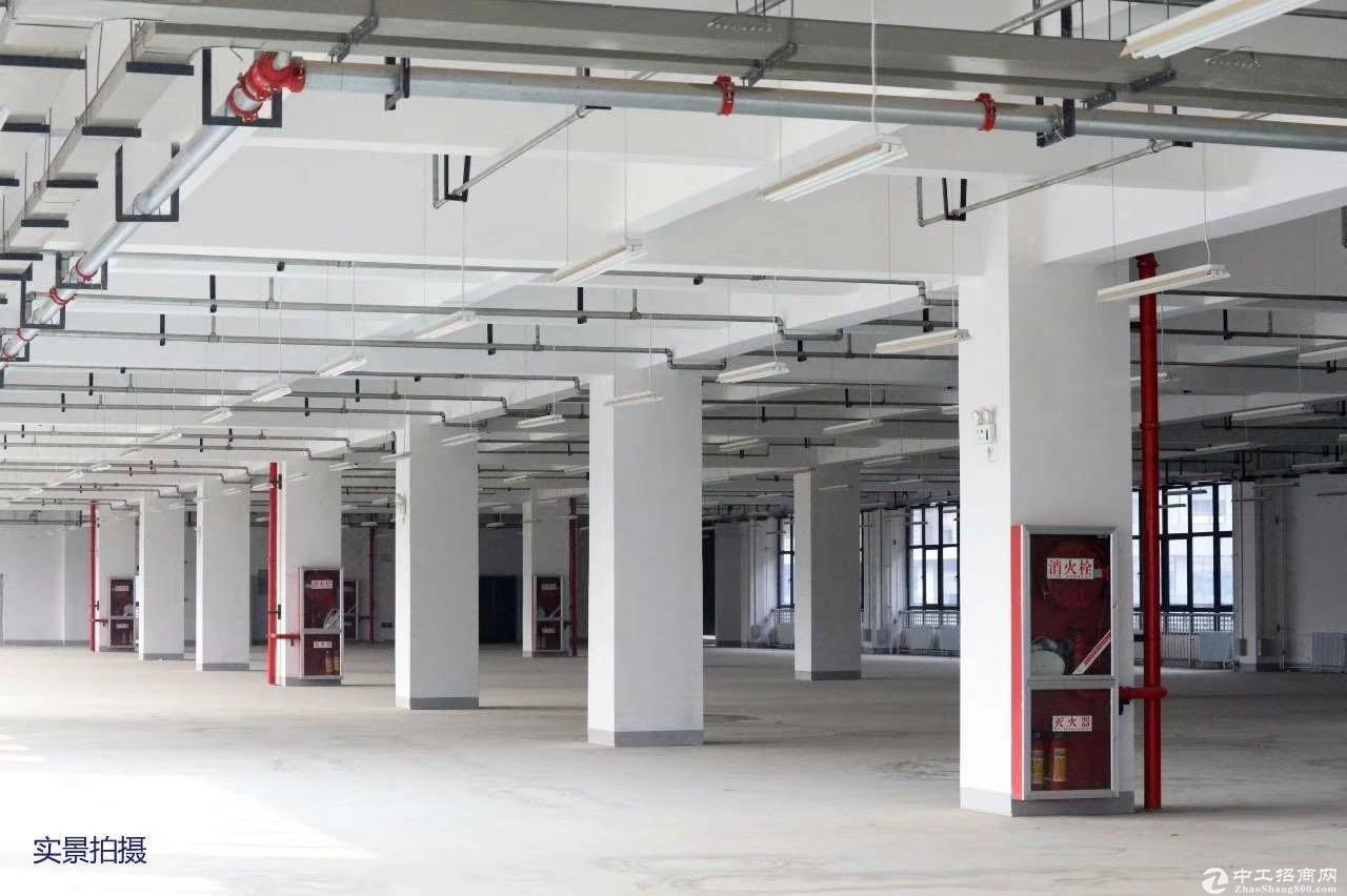 蔡家坡百万平米标准化厂房现房招商图片5