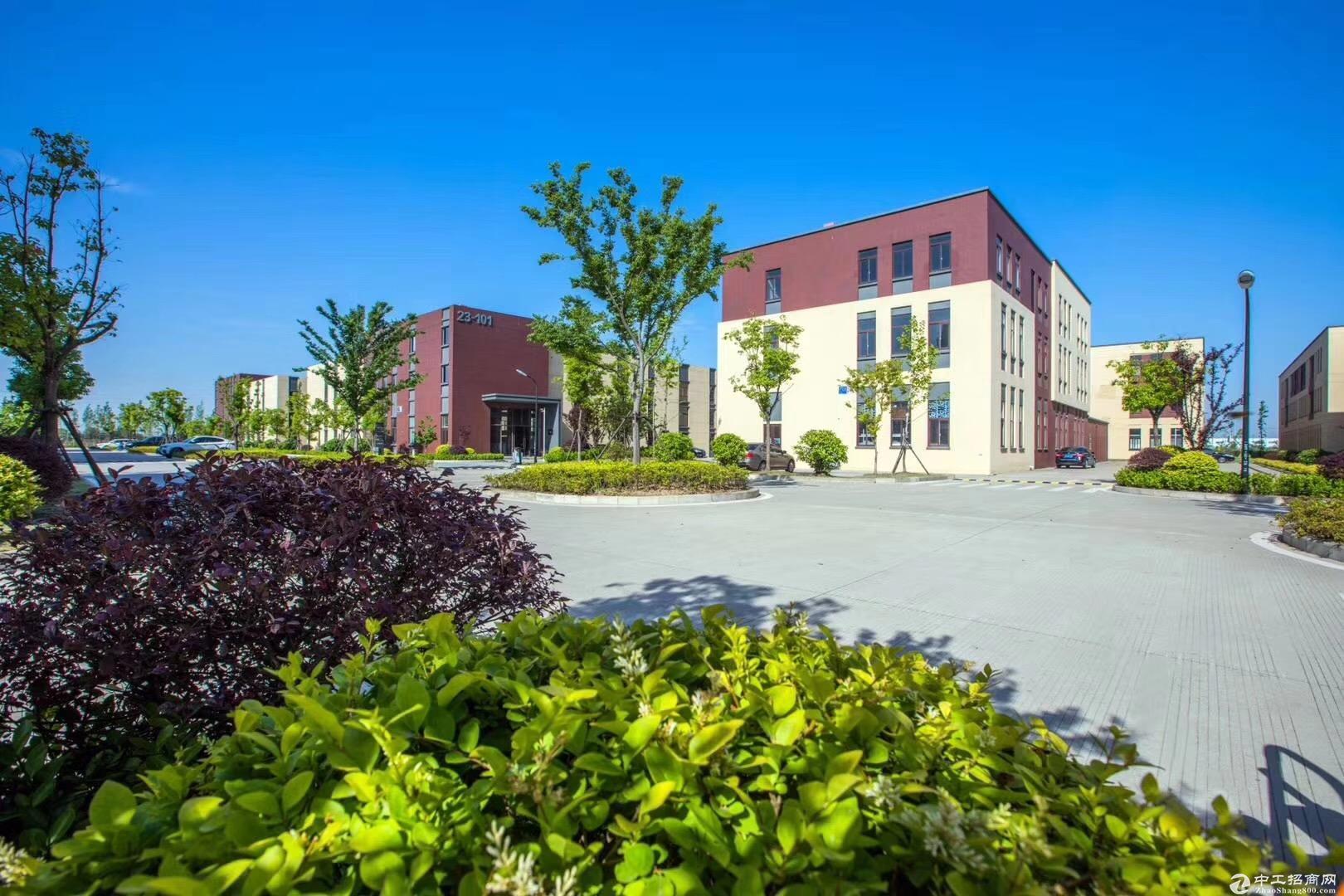 1550平,50年独立产权,新建标准厂房,紧邻高架-图2