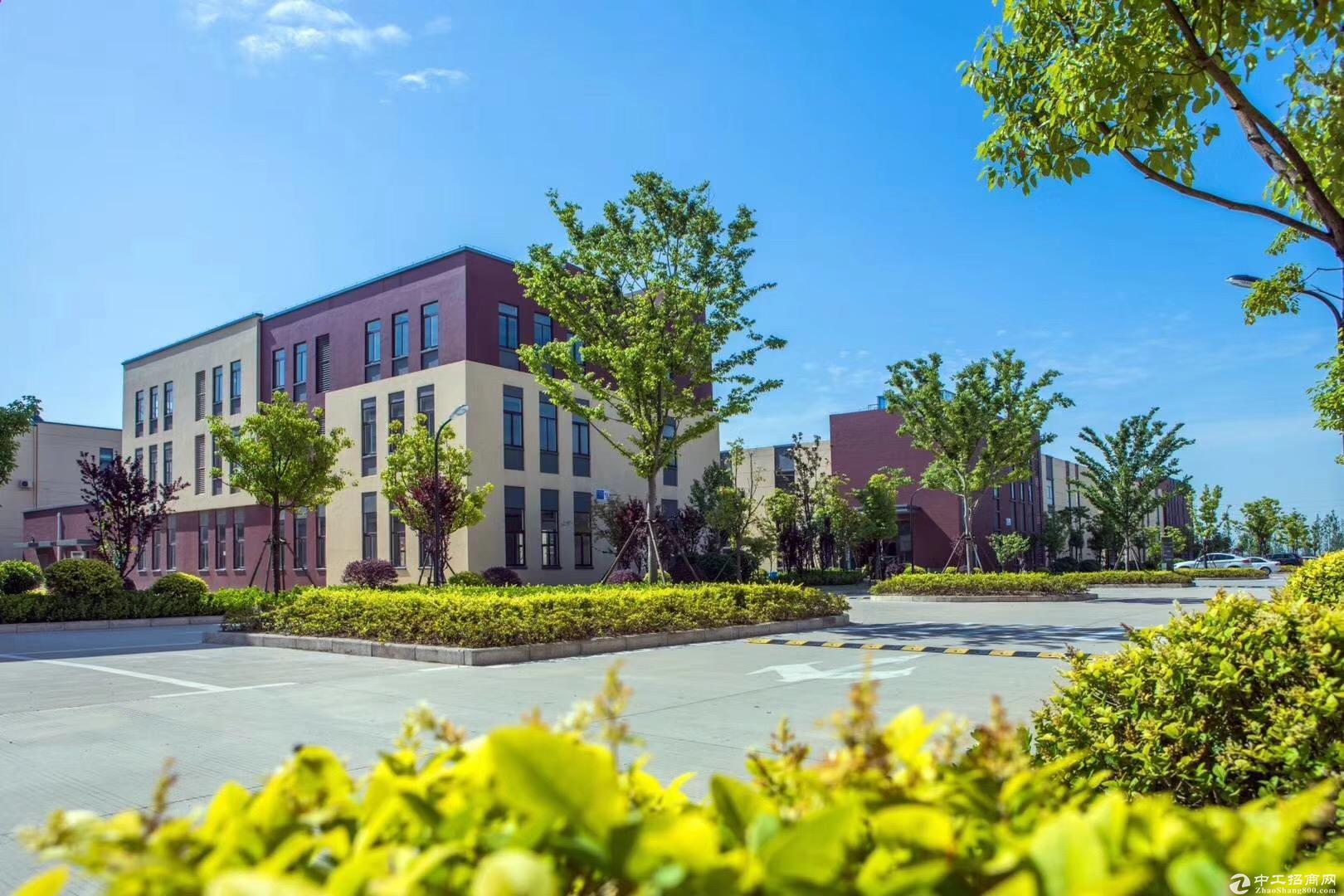 1550平,50年独立产权,新建标准厂房,紧邻高架-图4