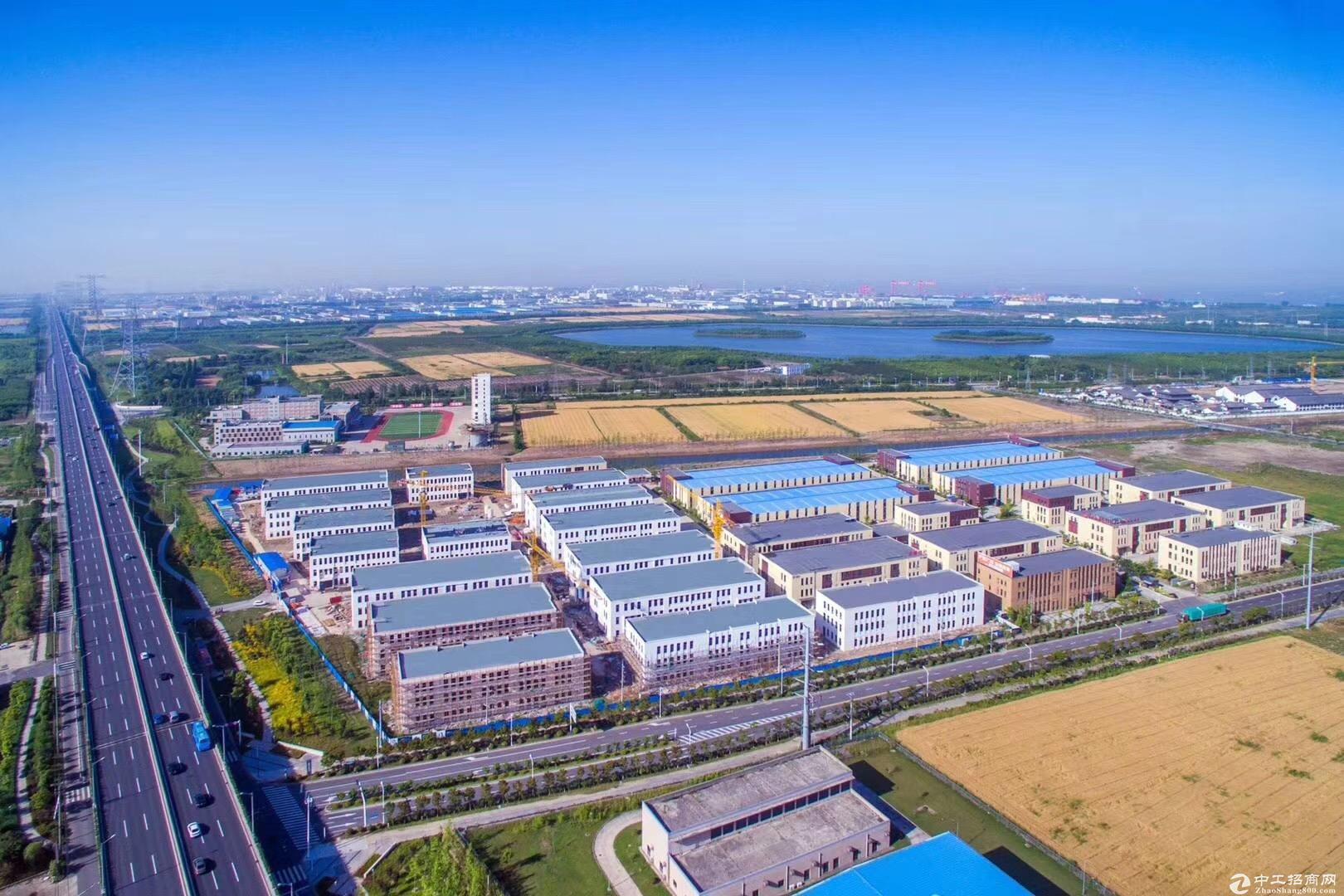 1550平,50年独立产权,新建标准厂房,紧邻高架-图5