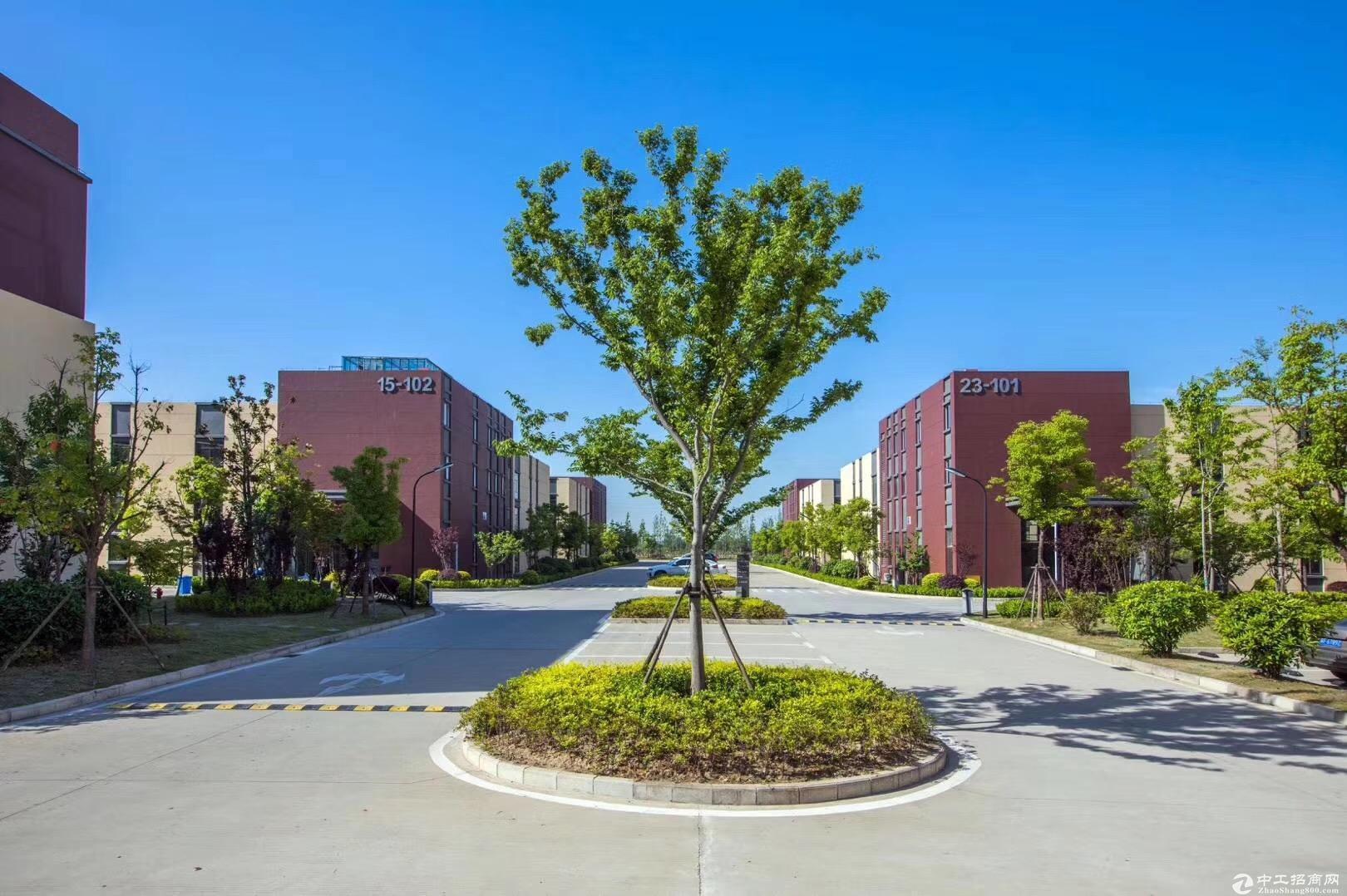 1550平,50年独立产权,新建标准厂房,紧邻高架-图7