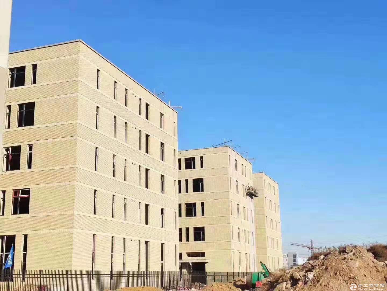 青岛即墨潮海街道大产权全新厂房出售,双证齐全,可按揭图片9