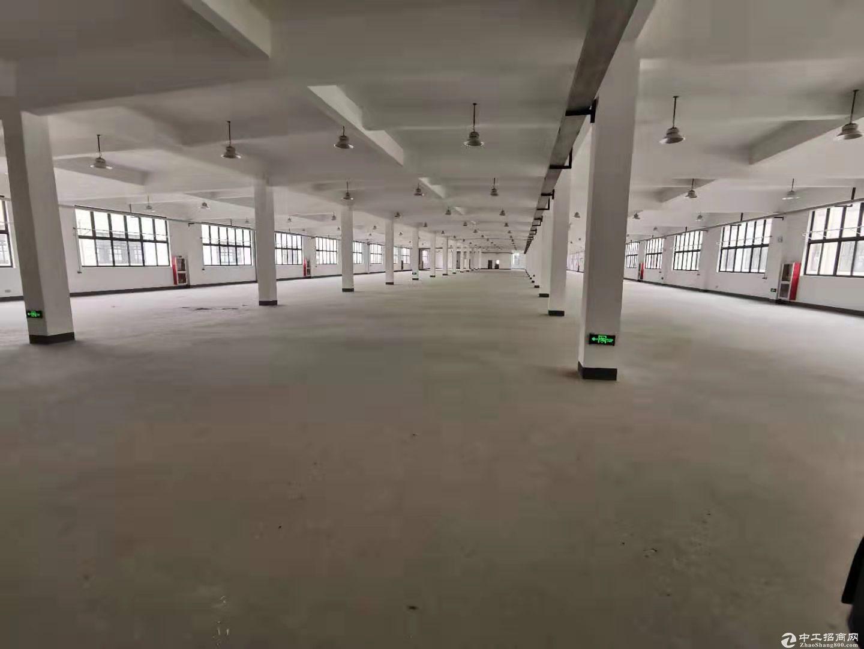 厂房出售 5000元 产证面积 104地块 开发商项目