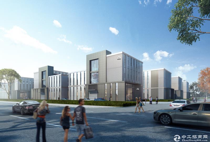 高品质独栋厂房  50年产权 稀缺两层半 送420平大露台-图3