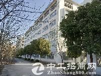 出租上海浦东新区航头 多层厂房可做生产办环评-图3