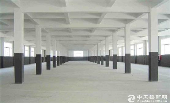 出售独栋4150平独栋厂房,50年独立产权,高数口旁,层高8.1米