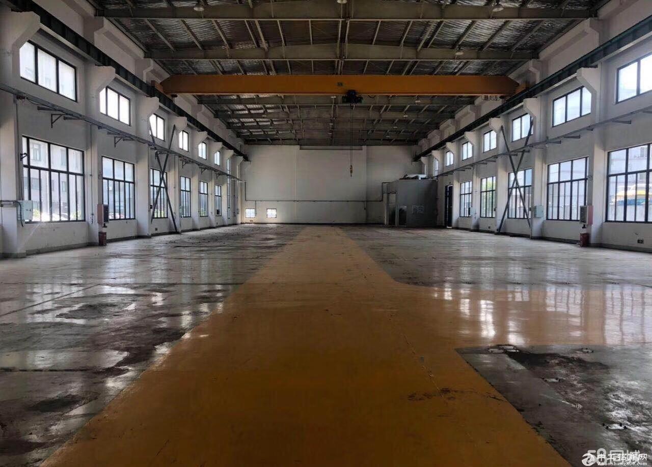 松江工业区单层 2400平厂房 出租