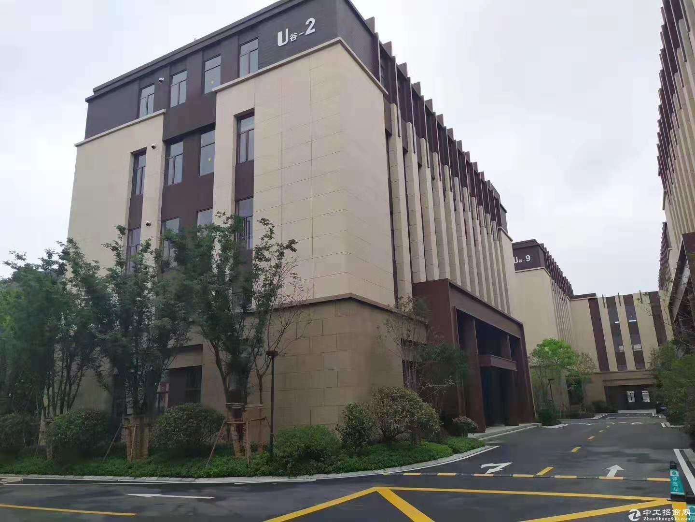 松江厂房 双层结构 高7.9米 适合生产 价格优惠