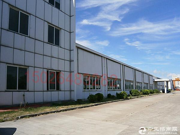 3746独栋单层3760平高6.5米精装办公0.8元