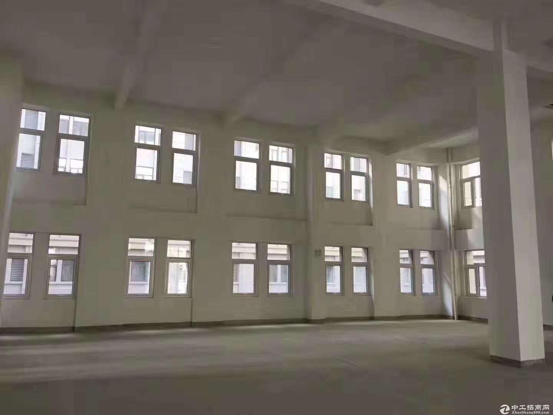 正规园区惊喜价大产权独栋新房出售!可生产环评交通便利