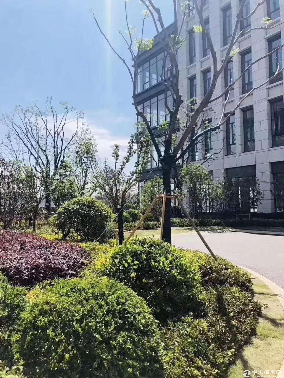 正规园区惊喜价大产权独栋新房出售!可生产环评交通便利-图4