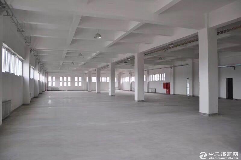 正规园区惊喜价大产权独栋新房出售!可生产环评交通便利-图5
