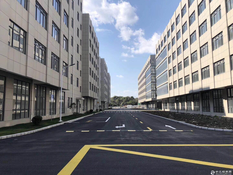 松江科技园区厂房出租面积800平起可生产环评