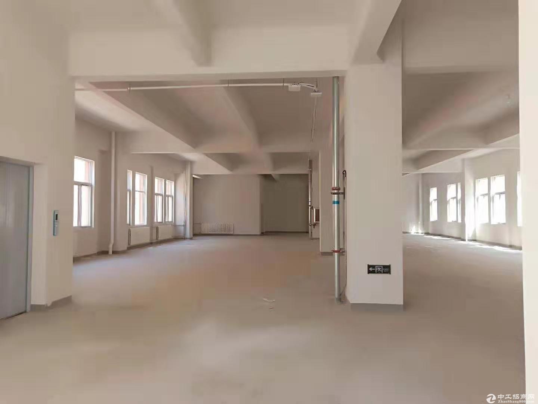 正规园区 多层框架厂房 生产研发 组装检测 展厅仓储等可分租图片6