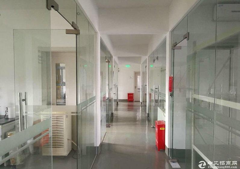 张江范畴(金桥外高桥,合庆周浦,浦江)生物医药500至2000平实验104地块