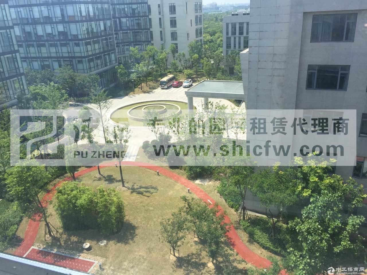 生化聚集区!租售上海专业生物医药化学研发实验室出租