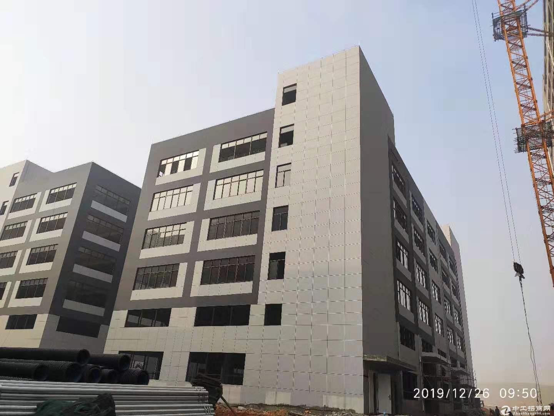 云浮(新区)万洋众创城工业厂房招商 独门独院 50年产权低首付