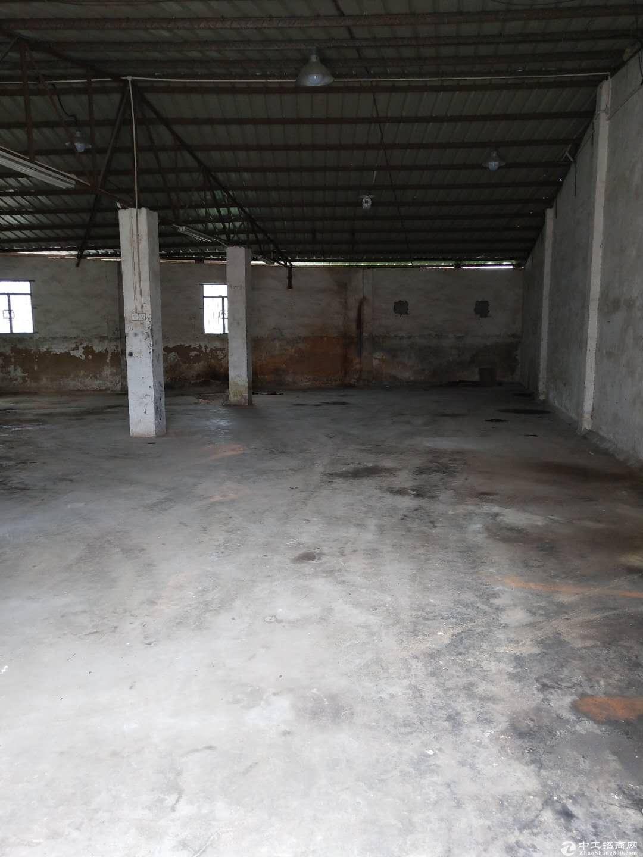 仓库招租 可做废品店的厂房  可做小加工厂的厂房招租