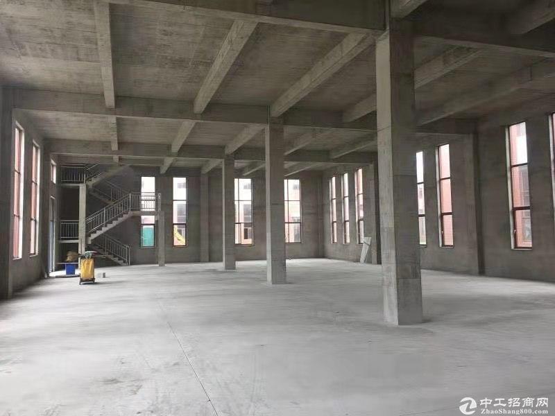 【适合生产加工企业进驻】12米高双层框架图片4