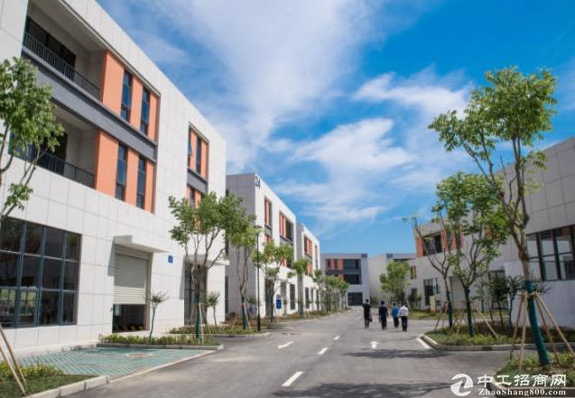 高端园区,标准框架厂房,50年产权低首付可按揭图片3