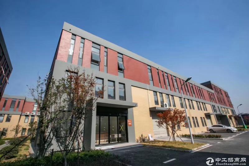 高端园区,标准框架厂房,50年产权低首付可按揭图片5