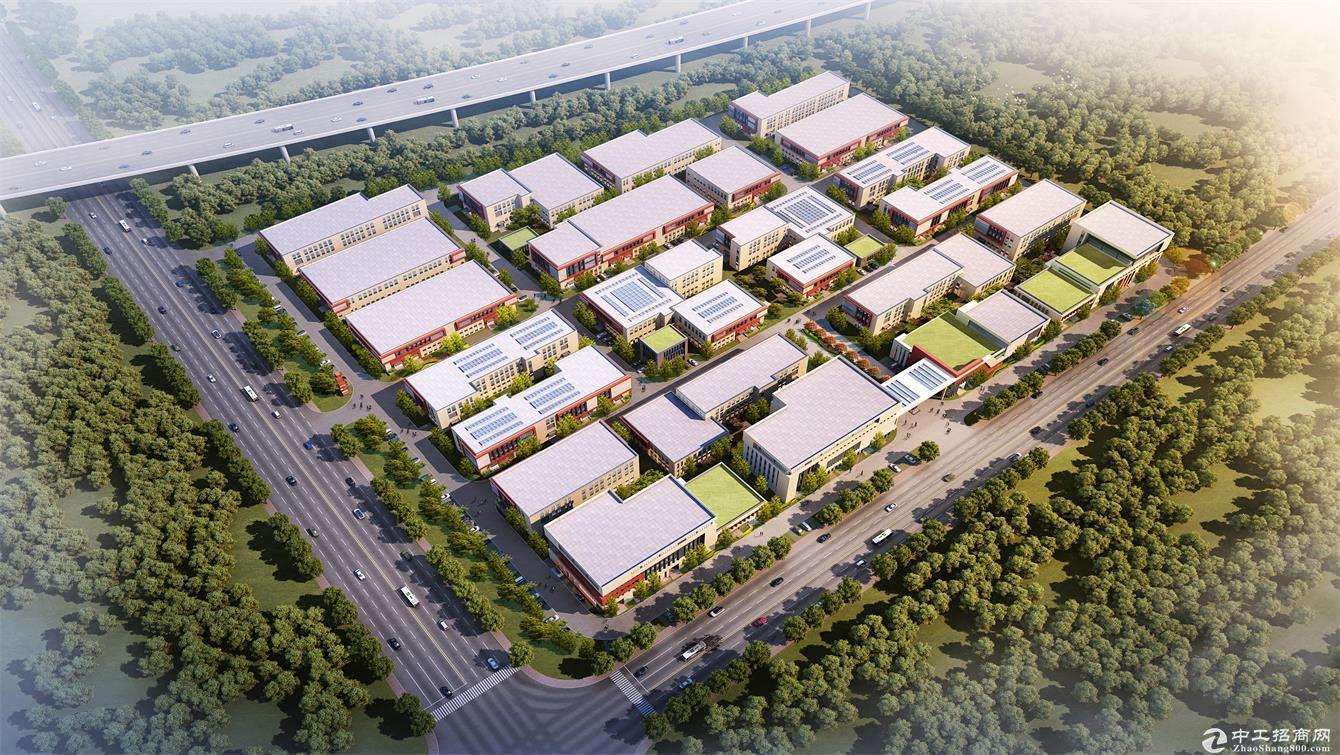 秦汉新城核心区域厂房出售,50年产权低首付图片2