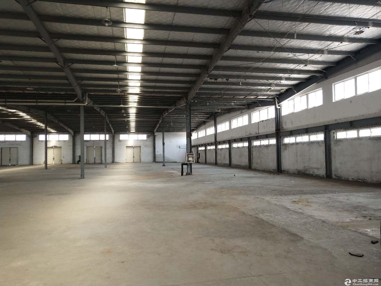 青岛即墨5000平米仓库出租,可分租,紧临高速和物流园图片4