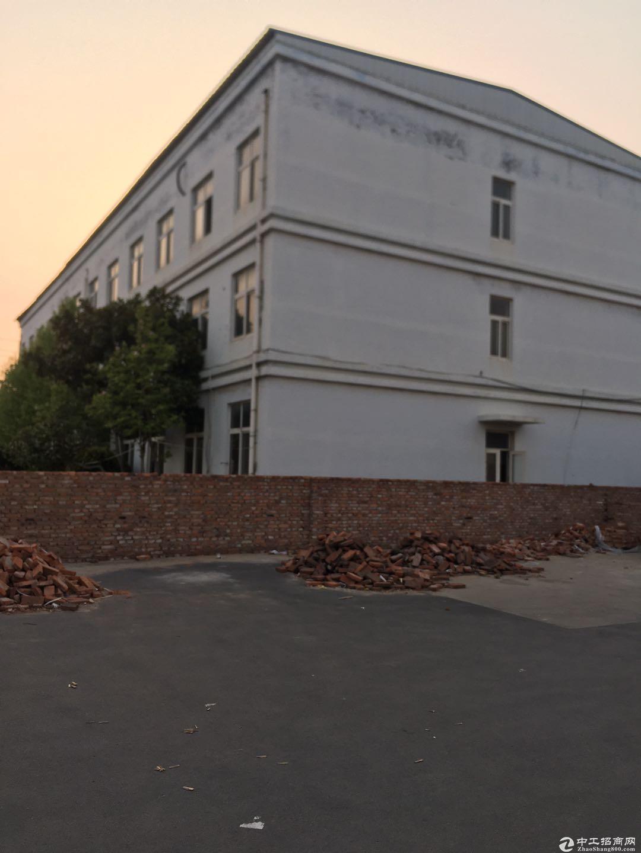 青岛即墨5000平米仓库出租,可分租,紧临高速和物流园图片9
