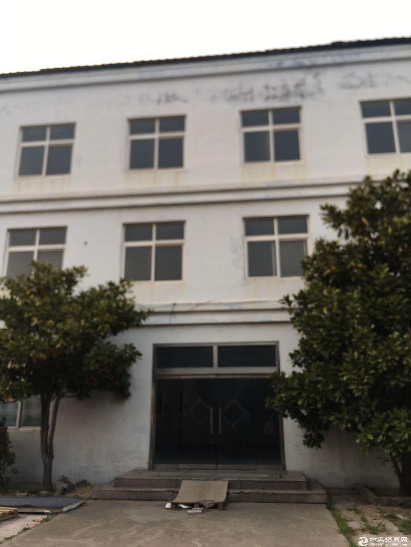 青岛即墨5000平米仓库出租,可分租,紧临高速和物流园图片11
