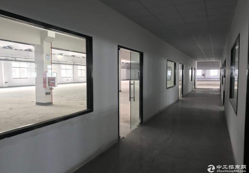 常州市经济技术开发区海桥科技园全新厂房出租图片5